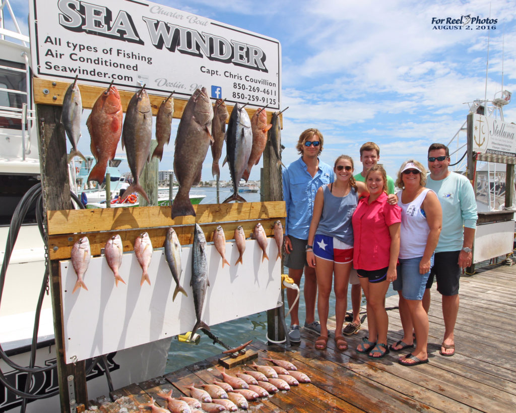 Sea Winder Grouper Fishing