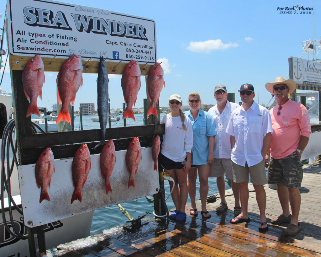 Healthy Red Snapper - Sea Winder Destin, FL